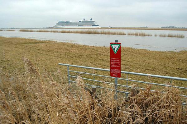 Abgesoffenes Ems-Deichvorland druch Überführung eines Kreuzfahrtschiffes, EU-Vogelschutzgebiet, Foto (C): Eilert Voß