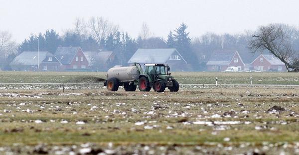 Gülle auf Gänseäsungsflächen, Rheiderland, Ditzumer-Verlaat, Februar 2015, Foto (C): Eilert Voß