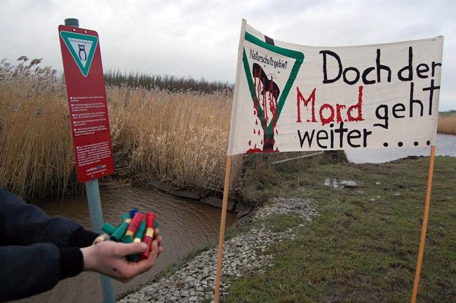 Jagd an Gewässern mit verbotenem Bleischrot. Foto (C): Eilert Voß