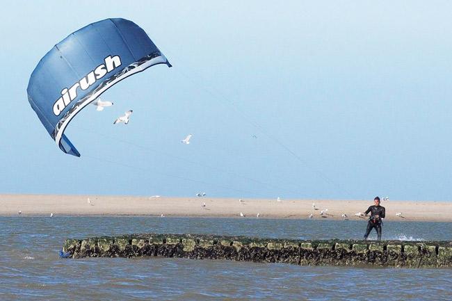 Kietsurfer auf Norderney vetreibt sogar die robusten Möwen, Foto (C): Eilert Voß