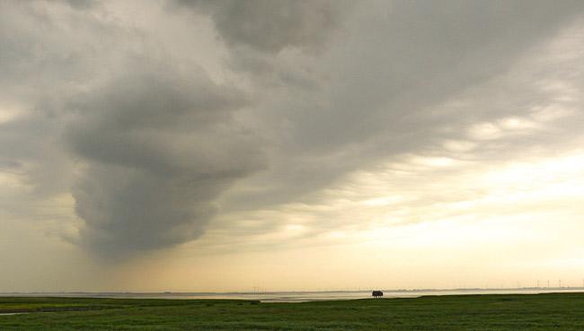 Wetter oder Klima? Blick über das Dollart-Watt Richtung Emden, Foto (C) Manfred Knake