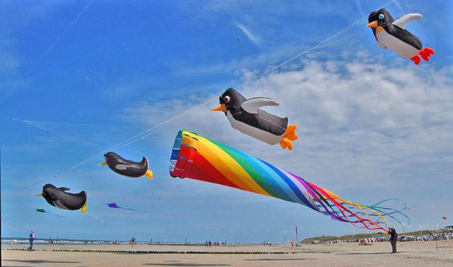 Pinguine statt Regenpfeifer: Drachenfest auf Norderney