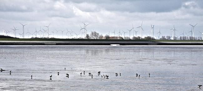 Blick vom Langeoog-Wattenfahrwasser aufs Festland, Foto (C): Manfred Knake