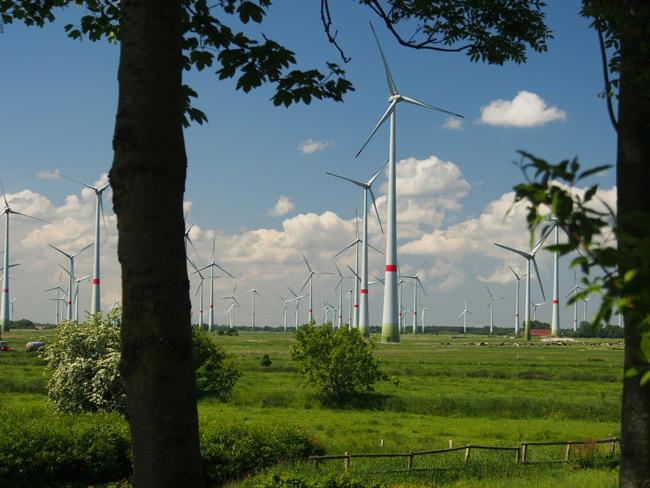 Mit Windparks gegen den Klimawandel? Roggenstede, LK Aurich/NDS