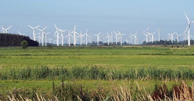 Naturschutz oder Windenergie? Wofür steht der BUND? Windpark Utgast/LK Wittmund/NDS inmitten des EU-Vogelschutzgebietes Norden-Esens, Foto (C): Manfred Knake