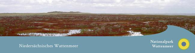 Screeshot (Bildzitat) http://www.nationalpark-wattenmeer.de/nds/service/presse/pressemitteilungen, 01. Jan. 2016