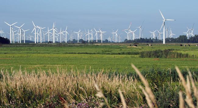 """Windparks Utgast, LK Wittmund/NDS am EU-Vogelschutzgebiet """"Ostfriesische Seemarschen Norden bis Esens"""", Foto (C): Manfred Knake"""