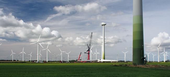 Windpark Utgast/LK Wittmund/NDS: Industriegebiet direkt am EU-Vogelschutzgebiet, Foto (C): Manfred Knake