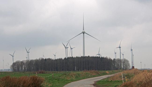 """Windpark Utarp/LK Wittmund: Viele Ostfriesne haben es satt, in solchen """"Schaufenstern"""" zu lebeben. Foto (C): Manfred Knake"""
