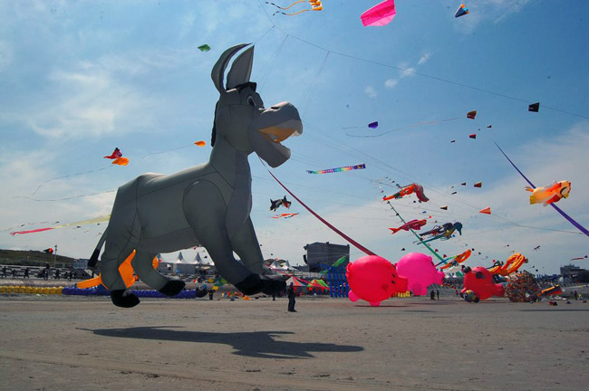 Norderney: fliegende Plastikesel statt Strandbrüter, Foto (C): Eilert Voß