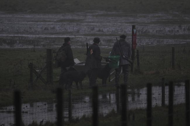 """Morgendliche Gänsejäger im Nebel kommen aus dem NAturschutz- und Vogelschutzgebiet """"Petkumer Deichvorland"""" an der Ems, Foto (C): Eilert Voß"""