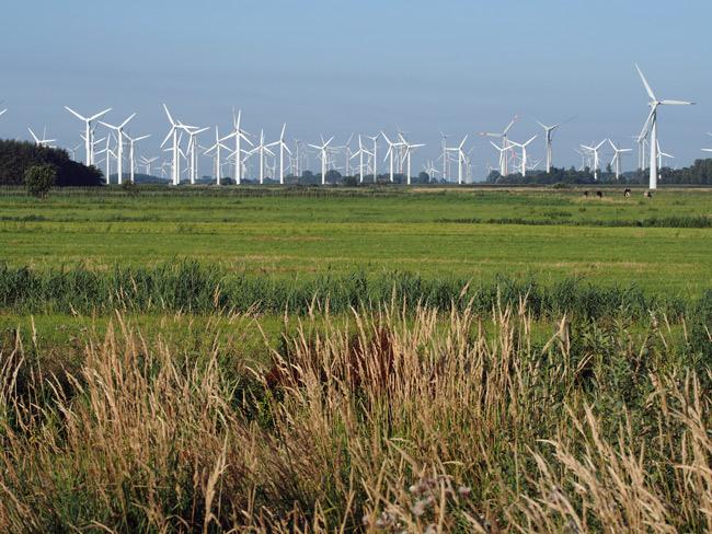 Windpark Utgast am EU-Vogelschutzgebebiet V63, Landkreis Wittmund, einer von vielen Windparks an der Küste: ehemaliges Rastgebiet von Gänsen und Watvögeln; Foto (C): Manfred Knake